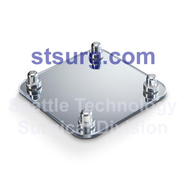 STSCSM-256 Adjustable Mirror
